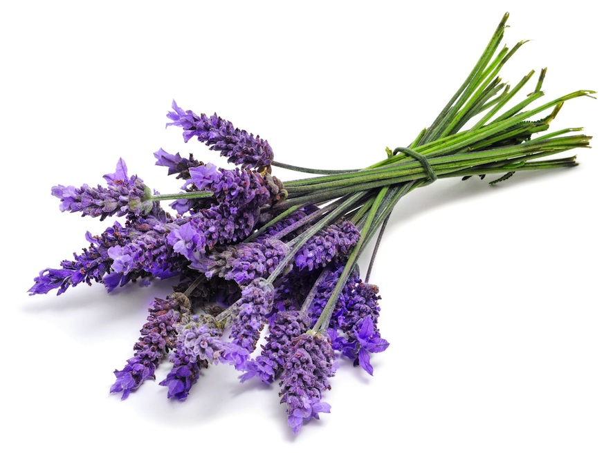 Lavender Infused Beauty Products To Soothe The Soul